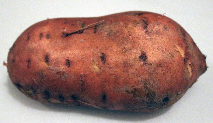 Maple-Glazed Apple and Sweet Potato Gratin