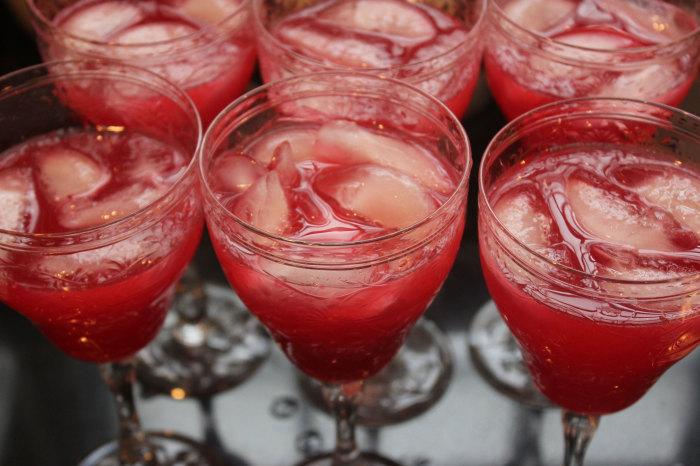 Brian's Cranberry Margarita