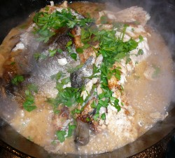 Trout in Wine Sauce