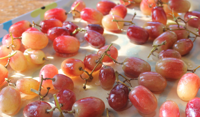 Crackling Good Grapes from Holly Garrison