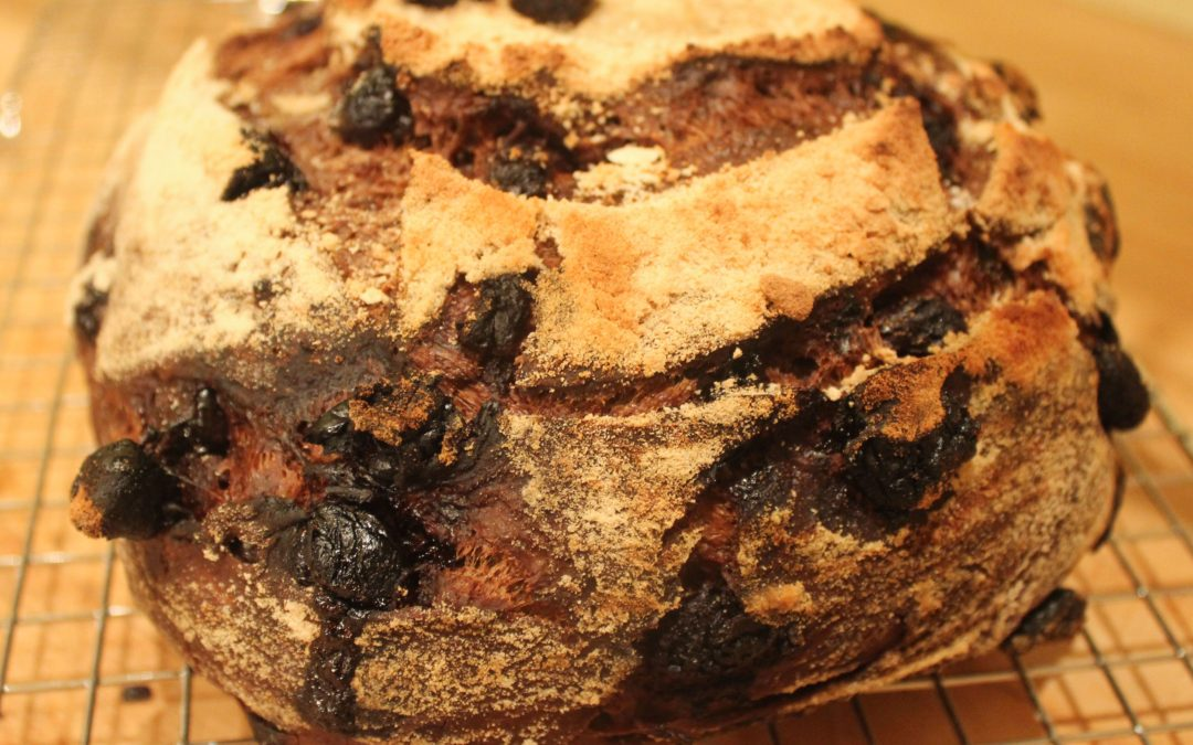 Chocolate-Cherry Sourdough Bread from Modernist Bread
