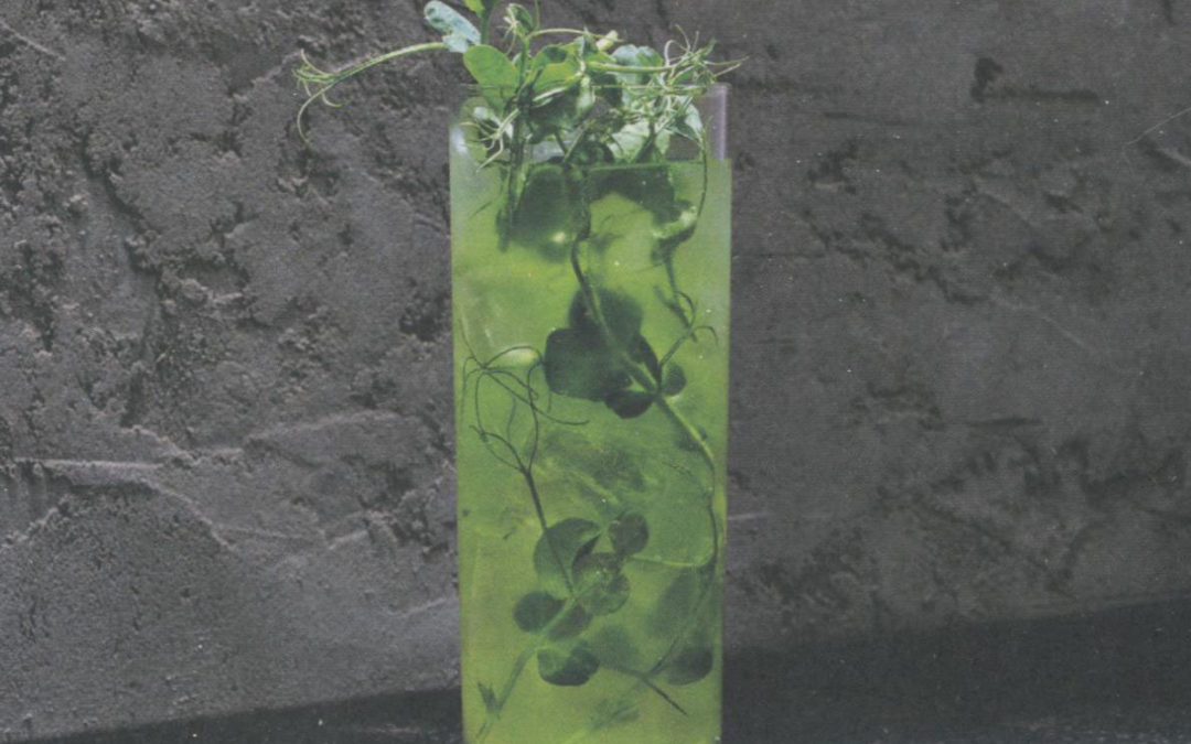Pea & Tonic from Cocktail Cookbook by Oskar Kinberg