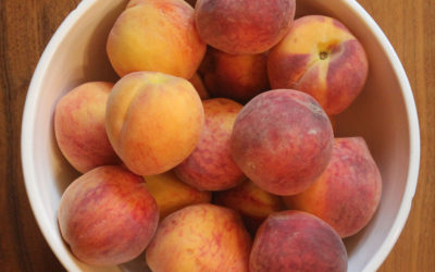 Peach and Bread Pudding with Sabayon Sauce from Richard Olney