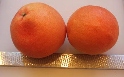 Grapefruit Syrup for Cocktails