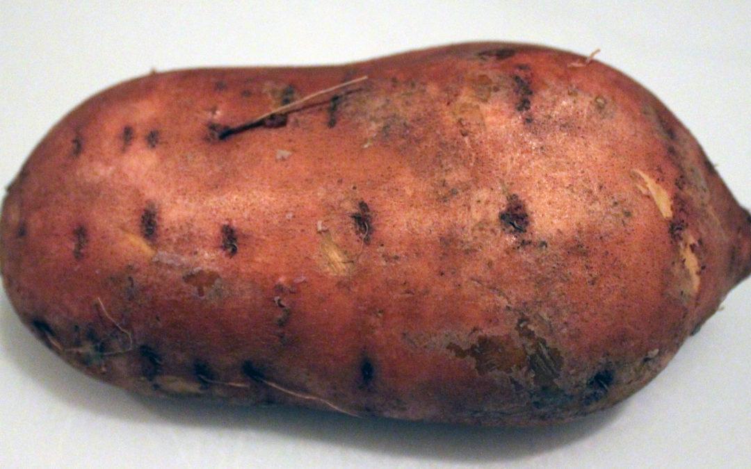 Thanksgiving Side Dish Idea: Bourbon-Glazed Sweet Potato, Apple and Pecan Gratin