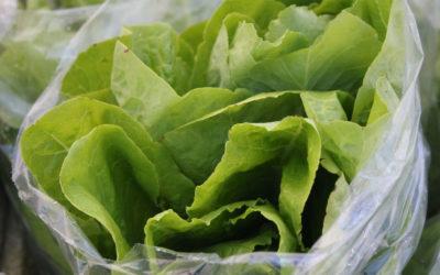 TBT Recipe: Butter Lettuce Salad with Tarragon and Citrus-Honey Vinaigrette from Eric Ripert