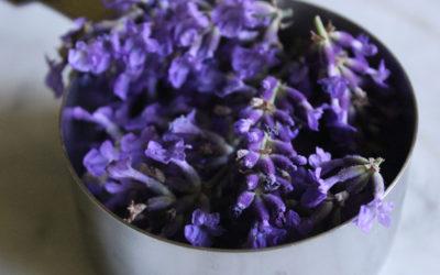 Homemade Lavender Syrup