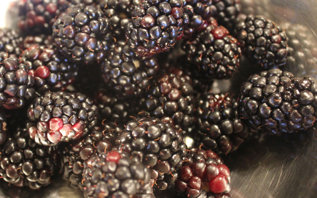TBT Recipe: Backyard Blackberry Margarita